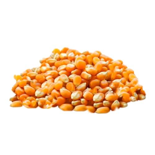 Tyrkisk majs naturligt