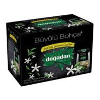 Groene thee met jasmijn bloemen