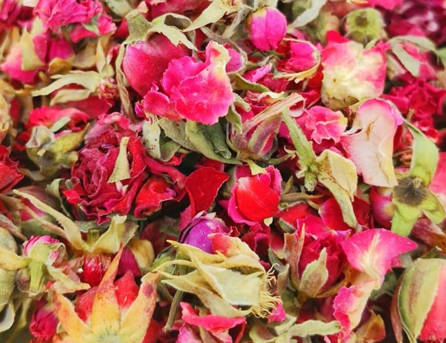 Red Rosebud Tea фото